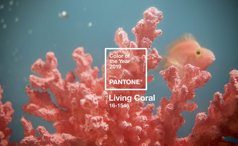 Boutique Retouching PRIMARY-PantoneCOY2019_coral_bluegreen_SWATCH Color Harmonies And Color Of The Year 2019 - Living Coral