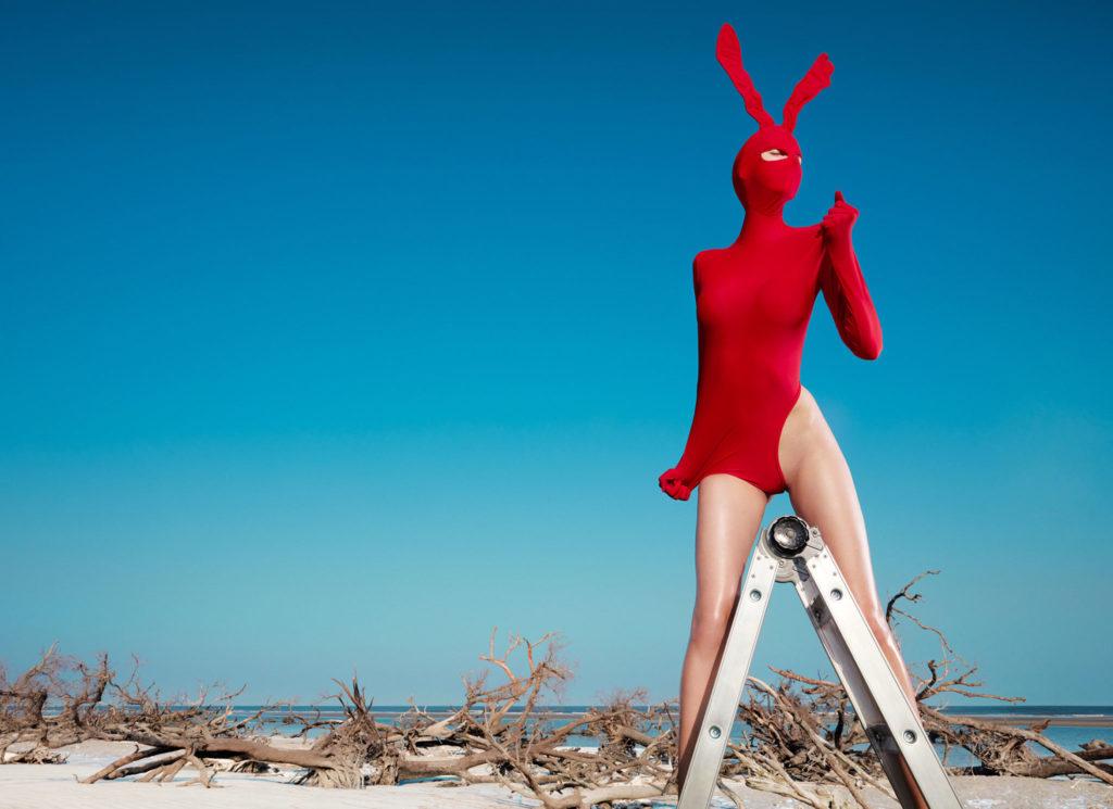 Boutique Retouching rabbit1final-1024x745 LTR!030 - Daniel Meadows Retoucher